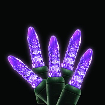 Purple M5 Mini LED light string