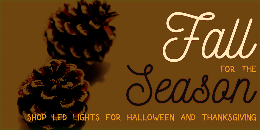 Shop string lights for Halloween and Thanksgiving